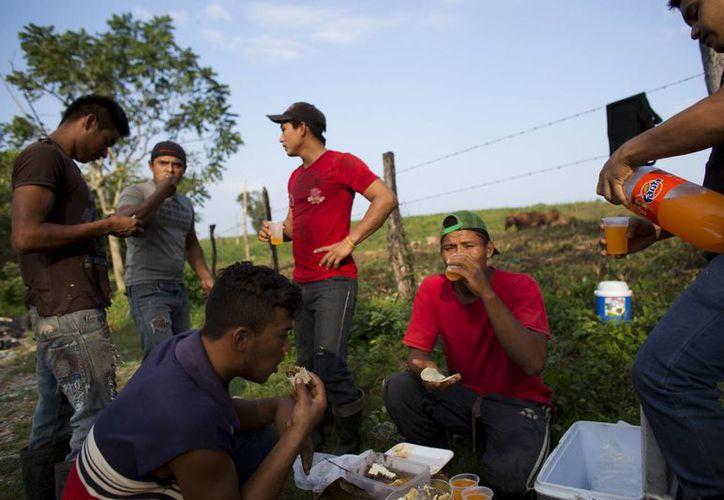 El inmigrante hondureño Carlos Mejía, segundo de la derecha, comparte el desayuno con obreros hondureños y mexicanos mientras se preparan para una larga jornada de separar y empacar botellas de plástico para ser recicladas, a las afueras de Tenosique. (AP/Rebecca Blackwell)