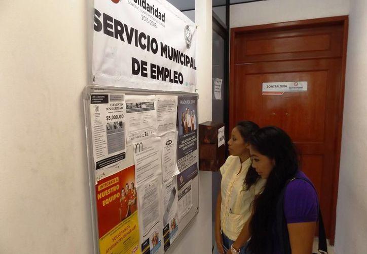 En las instalaciones del Servicio Municipal de Empleo, los solicitantes reciben orientación sobre las vacantes disponibles. (Daniel Pacheco/SIPSE)
