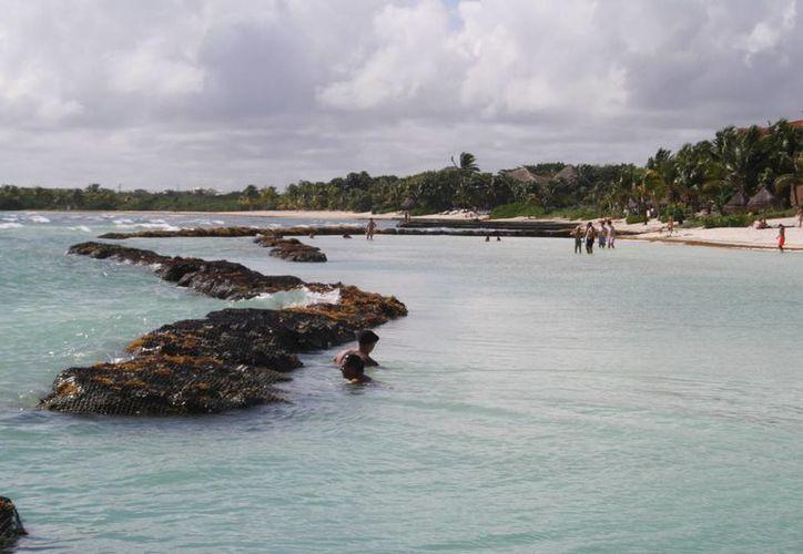 La Semarnat someterá a consulta la construcción del Hotel Catalonia Yucatán Beach en Puerto Aventuras. (Octavio Martínez/SIPSE)