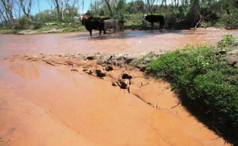 La comisión enviada por el gobierno para inspeccionar la zona del desastre indicó que las instancias correspondientes evalúan el retiro de la concesión a Grupo México. (Archivo/SIPSE)