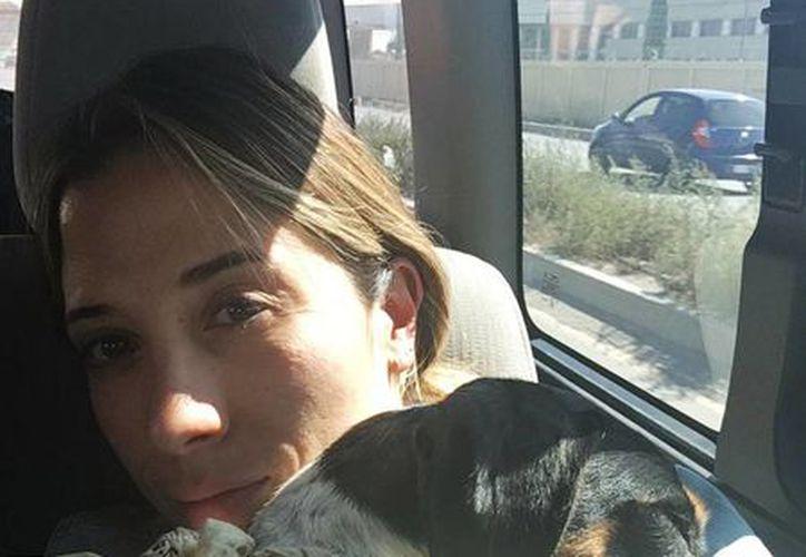 'Estamos agotadas pero juntas ! Nunca pierdan la fe #encontramosamika', aseguró Pamela vía Twitter. (@Pam_AlvarezA)