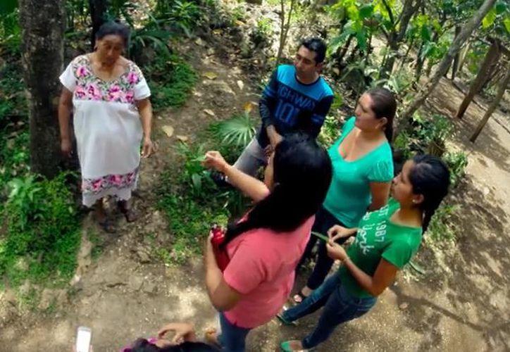 Maya Ka'an es impulsando con prácticas amigables con la biodiversidad y de la organización comunitaria. (Foto: Captura)