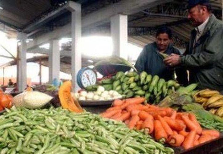 Las causas del aumento de la inflación en noviembre fueron, según el Inegi, el alza en las tarifas de energía eléctrica y en el precio de frutas y verduras. (Milenio)