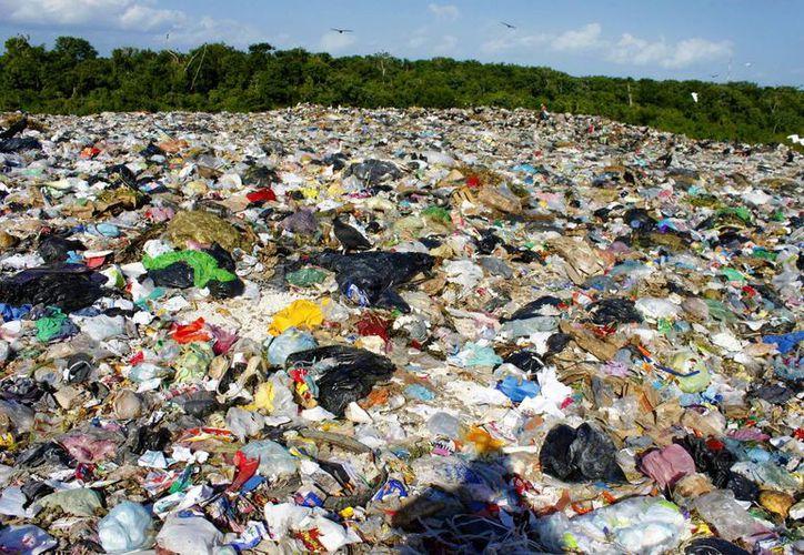 El exceso de basura empeora con las lluvias.(Paloma Wong/SIPSE)