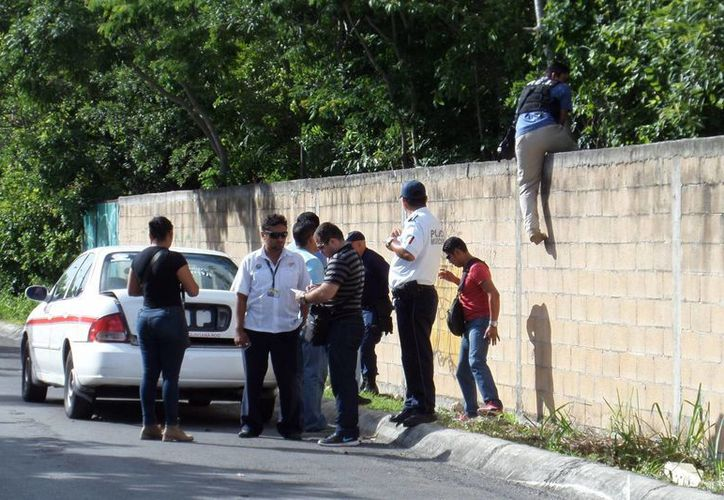 El cuerpo de un perro sin vida y en descomposición generó un fuerte movimiento policiaco ayer en Cozumel. (Gustavo Villegas/SIPSE)