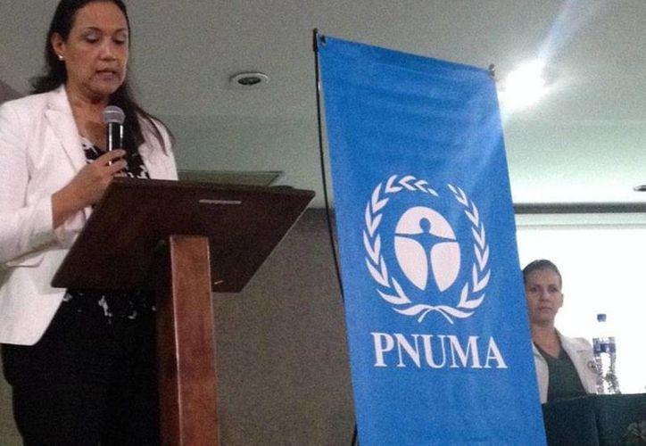 Dolores Barrientos Alemán, representante del Pnuma, informó que Monterrey se ha colocado como la metrópoli más contaminada de México debido a las plantas industriales en la periferia. (Foto de archivo tomada de @PNUMA_Mexico)