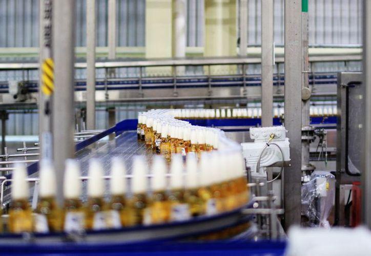 Cervecería Yucateca produce tres de las marcas más vendidas de Grupo Modelo. (Milenio Novedades)