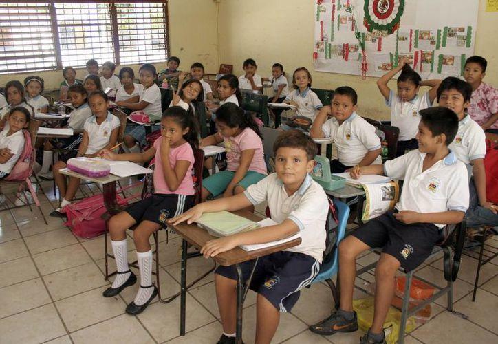 Las primarias de Quintana Roo se mantuvieron en el nivel esperado, aunque sus índices siempre fueron negativos. (Tomás Álvarez/SPSE)