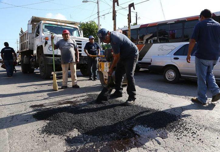 Las cuadrillas del Ayuntamiento bachearon ayer Circuito Colonias  en el tramo que se ubica entre las calles 31 y 35 de la colonia López Mateos. (Cortesía)