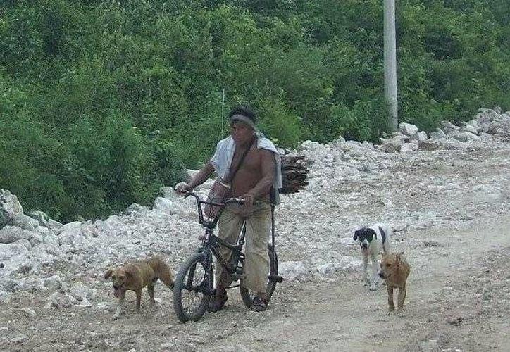 Un ex dirigente de la CNC lamenta que los recursos destinados a los campesinos tarden en llegar a los beneficiarios.  (Rossy López/SIPSE)