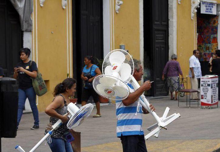 La paraestatal analizará en Mérida, conjuntamente con la iniciativa privada, las tarifas que se aplican en la entidad tomando en cuenta las altas temperaturas y la humedad. (SIPSE)