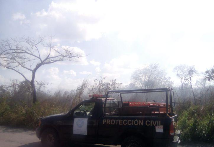 Solicitan a la ciudadanía reportar los conatos de incendios. (Raúl Balam/SIPSE)