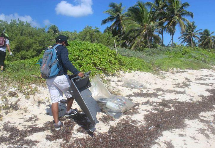 Los integrantes de las cooperativas constantemente realizan la limpieza de las costas. (Sara Cauich/SIPSE)