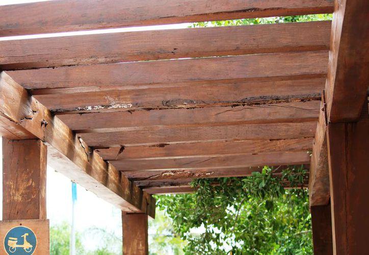 Tienen la plaga al menos cuatro estructuras de madera. (Octavio Martínez/SIPSE)