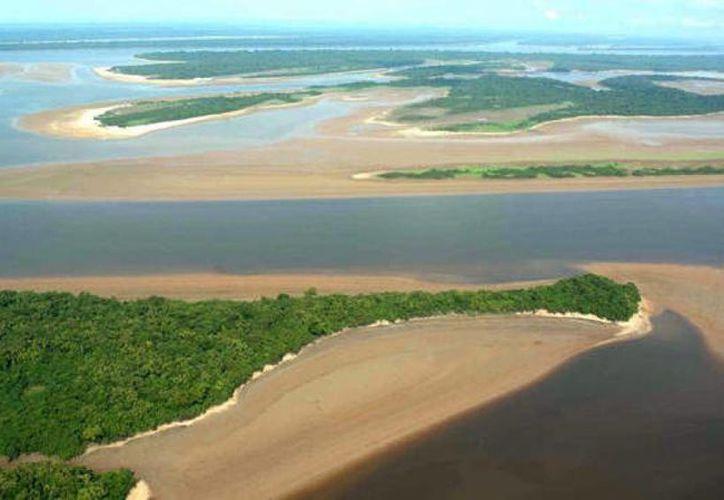 El río Amazonas es considerado el más grande y caudaloso del mundo. Los recursos que los estados brasileños invierten en su cuidado podrían reducirse drásticamente debido al endeudamiento por el que estos atraviesan. (Archivo/AP)
