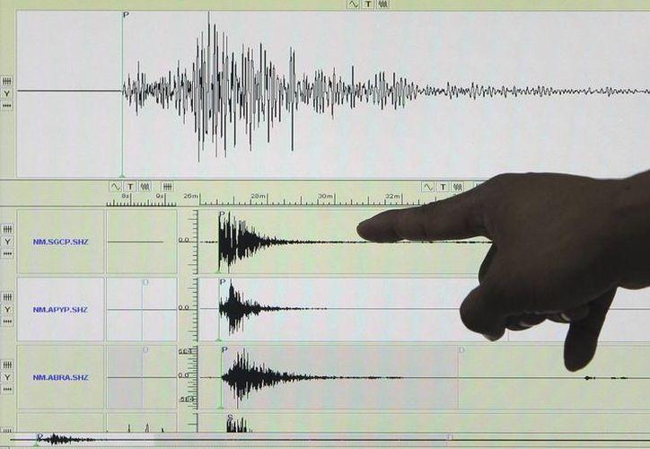 Un sismógrafo en el que aparece registrado un terremoto. (EFE/Archivo)