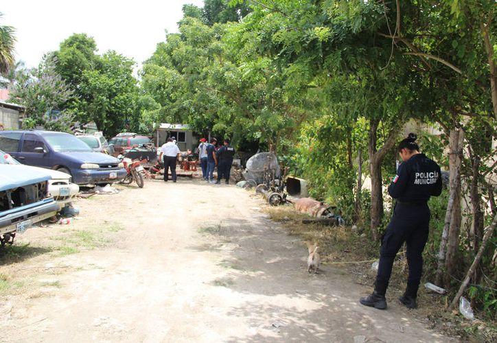 Policías municipales y estatales realizan operativos y cateos ilegales en propiedades de la zona cañera. (Redacción/SIPSE)