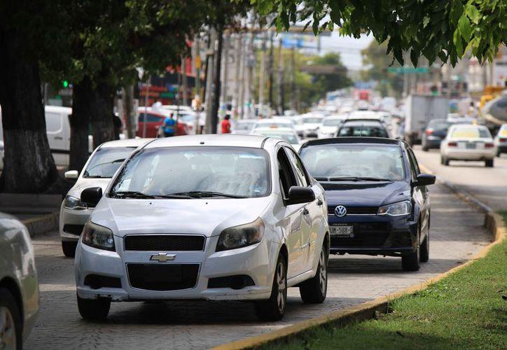 Cada día más personas se interesan por asegurar su vehículo. (Paola Chiomante/SIPSE)
