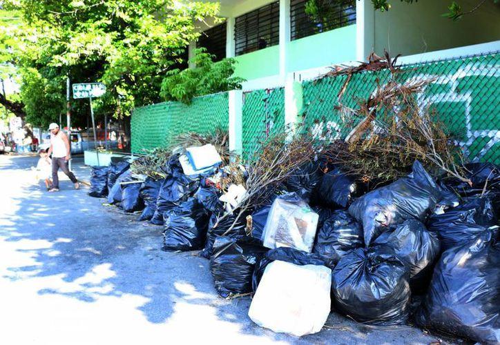 Durante la jornada de ayer en diversas escuelas de Mérida fue común ver decenas de bolsas de basura en las puertas como parte de los trabajos de limpieza. En la foto, la primaria Benito Juárez. (José Acosta/SIPSE)