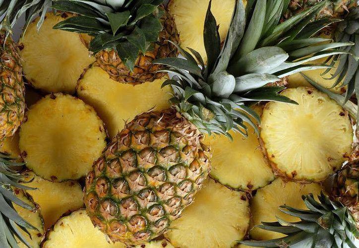 Cada hectárea produjo alrededor 50 mil piezas de la cotizada fruta, por lo que están preparando su producción entre el próximo 10 y 15 de marzo. (Javier Ortiz/SIPSE)