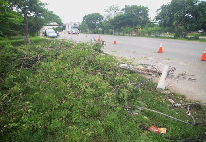 Grave congestionamiento de tránsito provocó un accidente ayer en el Anillo Periférico. (Milenio Novedades)