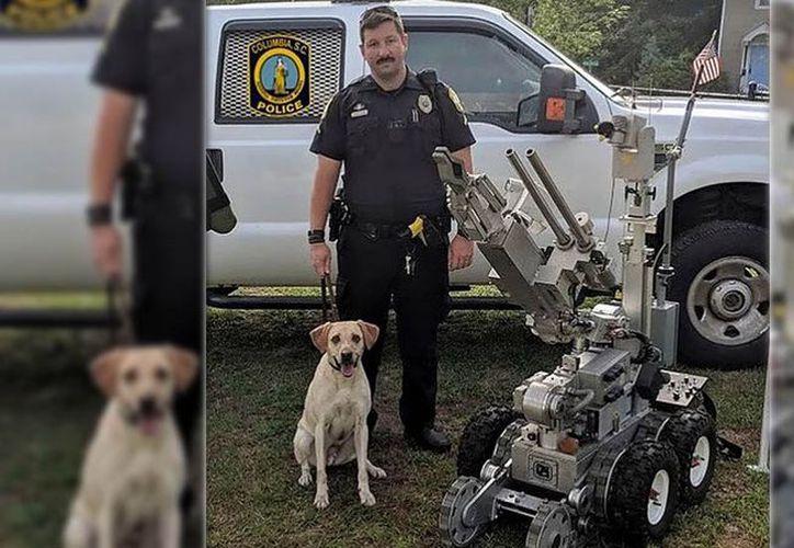 Hurt será suspendido del escuadrón de bombas y nunca más podrá manejar un perro policía. (AP)