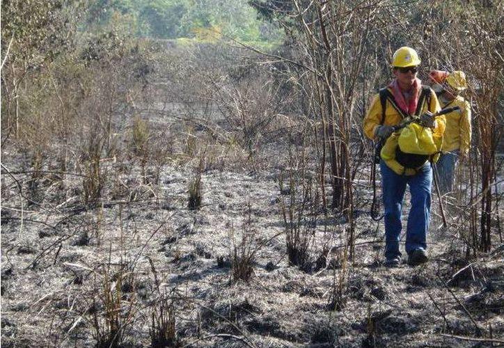 Participan un total de 77 elementos en el combate del incendio. (Redacción/SIPSE)