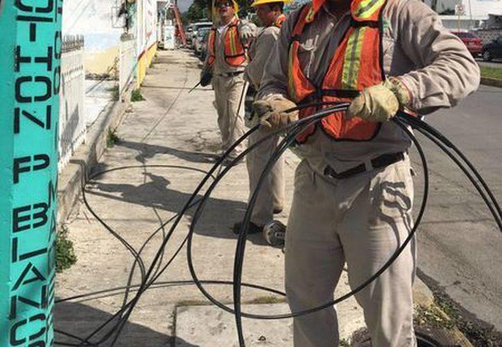 Trabajadores de la CFE trabajarán en la poda de árboles y limpieza de brechas. (Ángel Castilla/SIPSE)
