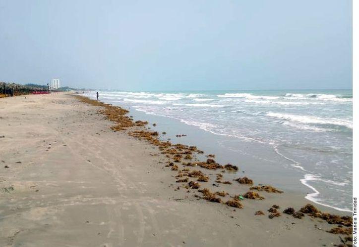 Las playas en el país son aptas para el uso recreativo durante la presente temporada vacacional. (Foto: Reforma/Mariela Trinidad)