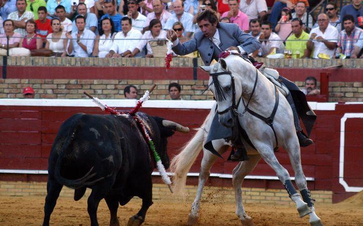 Pablo Hermoso se ha convertido en uno de los consentidos de la afición cancunense. (Raúl Caballero/SIPSE)