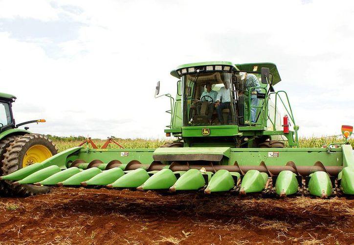 Entre sus actividades del domingo, el gobernador de Yucatán, Rolando Zapata Bello, supervisó la tecnificación de tierras de cultivo en la zona oriente del estado. (SIPSE)
