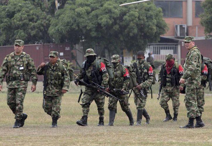Liberación de un miembro del Ejército de Liberación Nacional. (Agencias)
