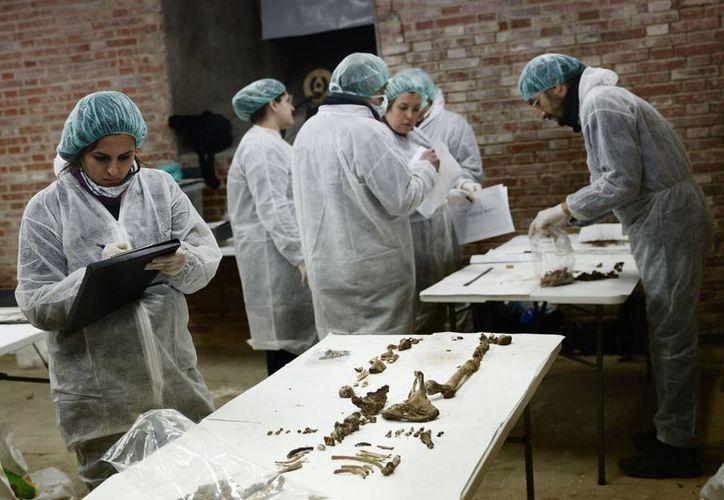 Muy pronto se podría saber donde han descansado desde hace 400 años los restos de Miguel de Cervantes. En la foto, trabajos de arqueología en un convento. (Foto:AP)