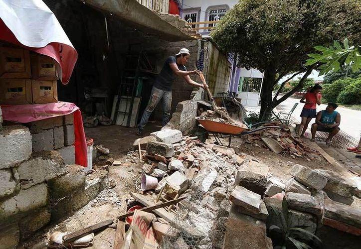 El sismo que se ha mencionado por varios años corresponde a las costas de Guerrero en la zona conocida como el GAP de Guerrero, ahí es donde se ha comentado que se espera ese sismo magnitud 8. (Cuarto Oscuro)