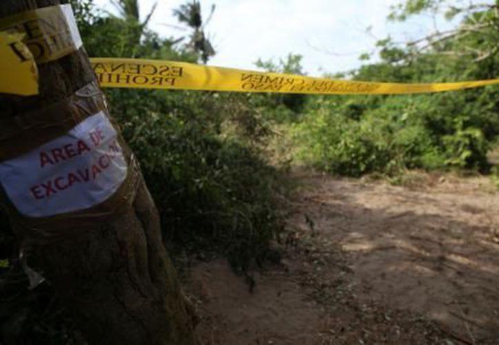 En las fosas de la comunidad de Arbolillo, en Alvarado, Veracruz, se localizaron más cráneos. (El Financiero)