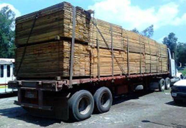 En este año han decomisado más de 150 metros cúbicos de maderas preciosas. (Milenio Novedades)
