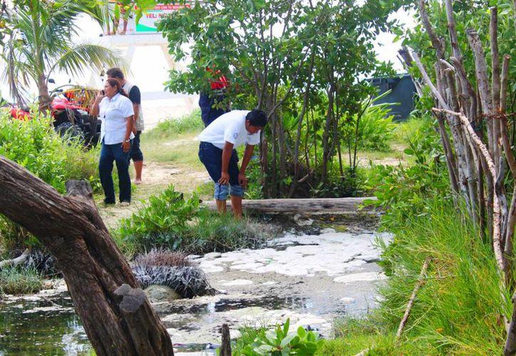 Autoridades de ecología municipal y de la CAPA realizaron una inspección en el cenote de Punta Esmeralda. (Daniel Pacheco/SIPSE)