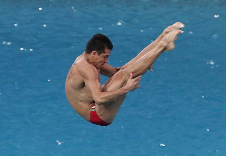 El Clavadista mexicano Rommel Pacheco obtuvo el segundo puesto en la semifinal de trampolín de tres metros individual, en los Juegos olímpicos Río 2016. (Notimex)