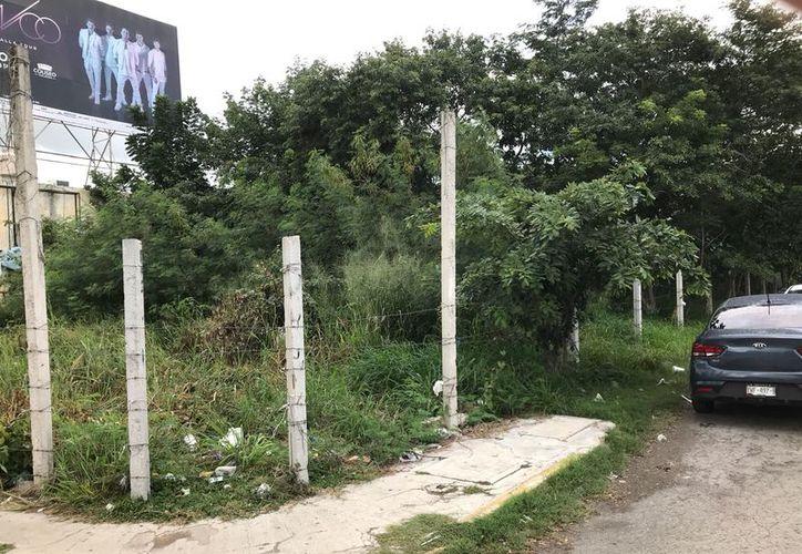 Un ejemplo de terreno en abandono se encuentra en la calle 50 Diagonal con 29-A del Fracc. Gonzalo Guerrero. (José Acosta/Milenio Novedades)