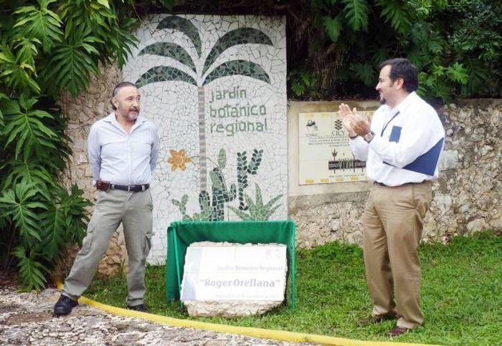 El Jardín Botánico del CICY es un buen paso para que Mérida se convierta en una ciudad verde. (SIPSE/Archivo)