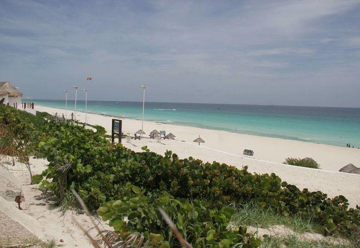El Caribe mexicano será uno de los principales sitios a estudiar por su gran sistema arrecifal. (Consuelo Javier/SIPSE)