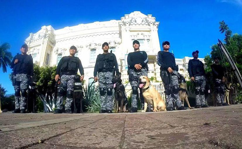 El Escuadrón Canino 'K9' debutó en el desfile conmemorativo de la Independencia el miércoles. (Cortesía)