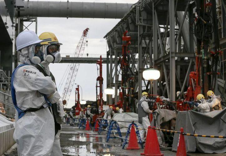 Trabajadores colocan tuberías en el suelo durante la construcción de un muro de hielo para congelar el agua radiactiva en la planta nuclear Tokyo Electric Power en Okuma, Fukushima. (EFE)