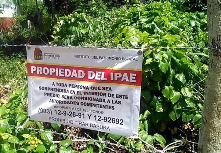 El ejido Bacalar interpuso una demanda contra el IPAE por adjudicarse tierras que les pertenecen. (Javier Ortiz/SIPSE)
