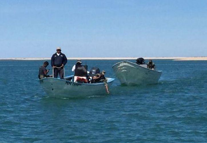 Las autoridades aseguraron las dos embarcaciones y ordenaron sus traslados al muelle Fondeport. (Twitter: Profepa)