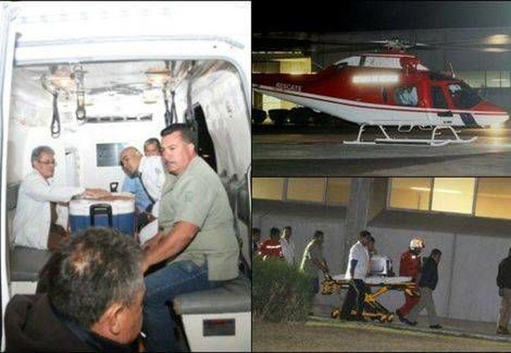 El corazón fue trasladado en helicóptero y el hígado por vía terrestre. Ambos desde Veracruz hasta el DF para ser trasplantados. (Milenio)