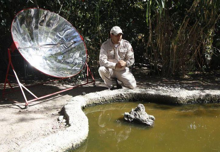Son cientos los kilos diarios de excremento que aprovechan el Zoológico de Puebla para transformarlos en energía en forma de biogás. (Notimex)