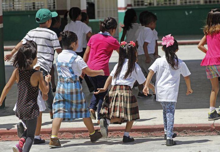 Durante las vacaciones no se reportaron pérdidas materiales o robos en las escuelas. (Foto: Jesús Tijerina/SIPSE).