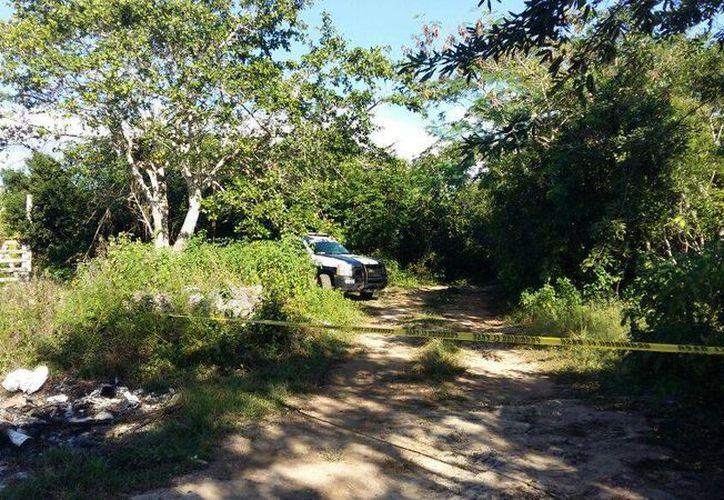 Las autoridades encontraron los huesos en un área verde. (Redacción)