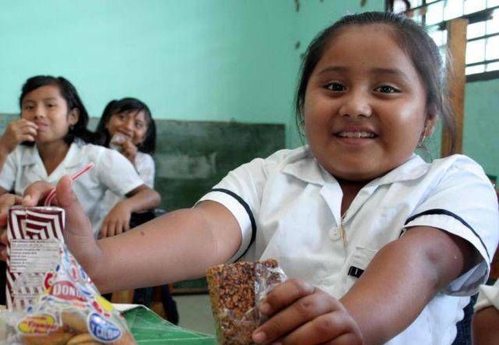 México ocupa los primeros lugares en sobrepeso y obesidad infantil. (Archivo/SIPSE)